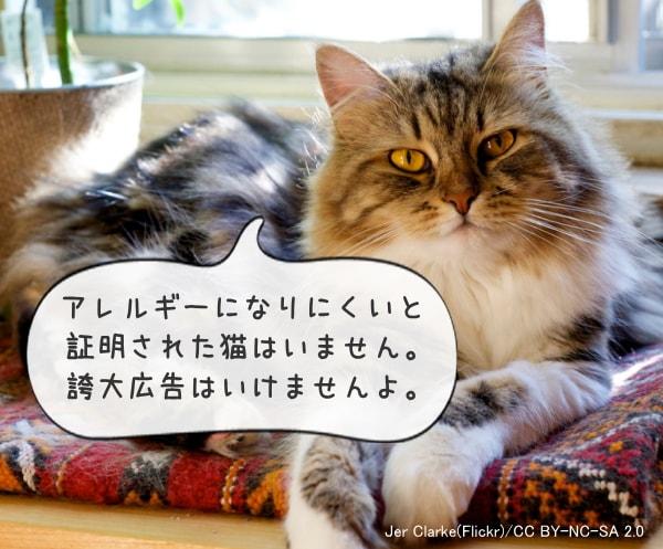 猫 アレルギー ワクチン